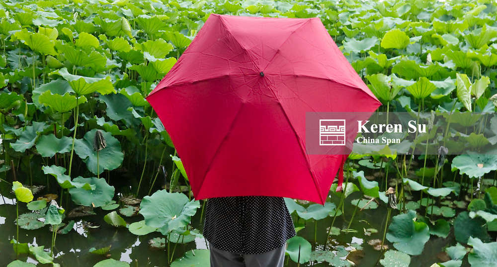 Girl with red umbrella watching the lotus pond by the West Lake, Hangzhou, Zhejiang, China