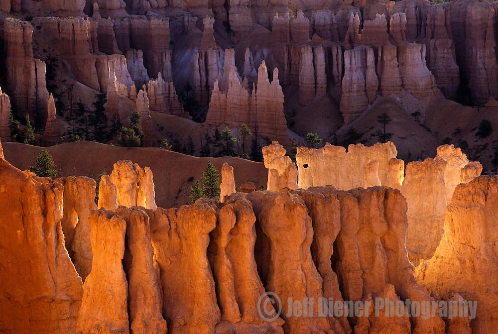 Hoodoos glow orange from sunrise light in Bryce Canyon National Park, Utah.