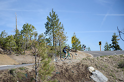 Specialized Team Ride 100517