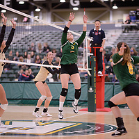 2nd year setter Satomi Togawa (5) of the Regina Cougars in action during Women's Volleyball home game on February 10 at Centre for Kinesiology, Health and Sport. Credit: Arthur Ward/Arthur Images