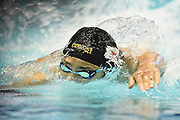 TOKYO, JAPAN - NOVEMBER 15:  Daiya Seto of Japan competes in the Men's 400m Individual Medley Final during day two of the FINA Swimming World Cup at Toyo Tatsumi International Swimming Center on November 15, 2017 in Tokyo, Japan.  (Photo by Matt Roberts/Getty Images)