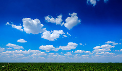 Summer skies in the Somme Valley, northern France<br /> <br /> (c) Andrew Wilson | Edinburgh Elite media