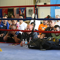 ORLANDO, FL - Felix Verdejo fans observe him as he shadow boxes in the ring during a media day workout at the Orlando Sports Martial Arts Academy on October 2, 2014 in Orlando, Florida. (Photo by Alex Menendez/Getty Images) *** Local Caption *** Felix Verdejo