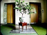 NR.000102/Hotel Pyongyang, avril 2000