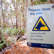 Dingo warning sign at Kingfisher Bay Resort, Queensland, Australia