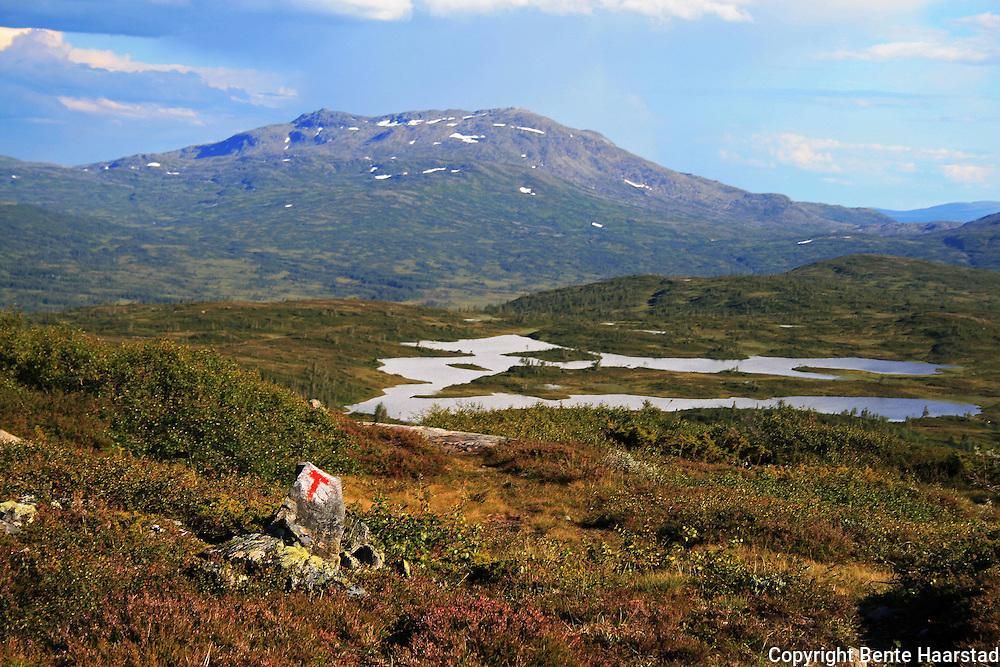 På veg til Schulzhytta fra Hersjøen i Selbu. Fongen og Kroksjøen. Skarvene og Roltdalen nasjonalpark. Foto: Bente Haarstad