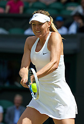 01.07.2014, All England Lawn Tennis Club, London, ENG, WTA Tour, Wimbledon, im Bild Maria Sharapova (RUS) during the Ladies' Singles 4th Round match on day eight // during the Wimbledon Championships at the All England Lawn Tennis Club in London, Great Britain on 2014/07/01. EXPA Pictures © 2014, PhotoCredit: EXPA/ Propagandaphoto/ David Rawcliffe<br /> <br /> *****ATTENTION - OUT of ENG, GBR*****