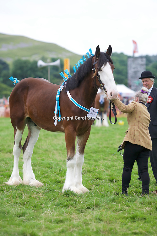 Becky Lee and Colloegrove Banksy (14 months)<br />