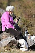 Kea (Nestor notabilis) Arthur's Pass, New Zealand | Kea oder Bergpapagei (Nestor notabilis) - Parkplätze sind immer interessant für Keas: Hier gibt es stets etwas Neues zu entdecken und die eine oder andere Nahrung fallt auch immer ab. Arthur's Pass, Neuseeländische Alpen, Neuseeland.