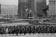 Mounted police line up at Orgreave. 30 May 1984