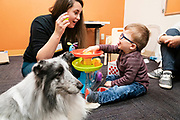 Animal-assisted therapy with patient Eli Webber in Minnetonka, Minnesota, Friday, Nov. 22, 2019.