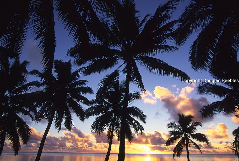 Sunset with palms, Aitutaki, Cook Islands<br />