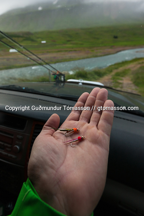 Man holding two icelandic trout fishing flies in the palm of his hand, Skíðadalur, North, Iceland.