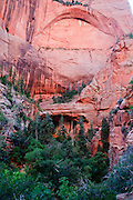 A picture of an interesting rock arch in the Kolob Canyon section of Zion National Park in Utah. Missoula Photographer