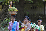 ceremony and celebration for new novice monks in New Bagan, Myanmar, Asia