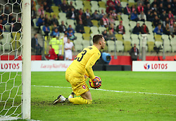 November 15, 2018 - Gdansk, Pomorze, Poland - Jiri Pavlenka (23) during the international friendly soccer match between Poland and Czech Republic at Energa Stadium in Gdansk, Poland on 15 November 2018  (Credit Image: © Mateusz Wlodarczyk/NurPhoto via ZUMA Press)