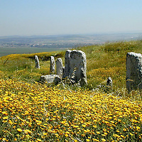 Shephelah-Gezer