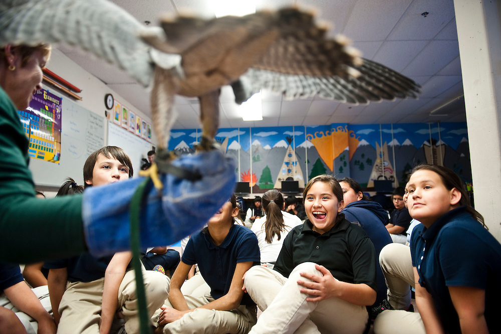 Students react to a Peregrine falcon named Aero spreading its wings while being held by Denise Lewis, educator at Fontenelle Forest. The Peregrine falcon is the fastest bird on the planet. Lewis and assistant Elizabeth Chalen, manager of outreach programming at Fontanelle Forest, introduce students at St. Augustine to falcons and a hawk November 8, 2013 as part of education in raptor recovery. (Photo by Lauren Justice)