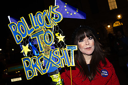 A pro Remain supporter outside the houses of Parliament in London makes her opinion on Brexit known as MPs vote on Prime Minister Theresa May's Brexit deal. London, January 15 2019.