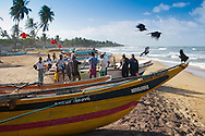 Kalutara, Sri Lanka, September 2011. Fishing boats and fishermen line the beaches between Kalutara and Kogala. The fishermen also dry the fish and sell it next to  the road. Photo by Frits Meyst/Adventure4ever.com