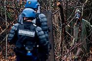 © Benjamin Girette / IP3 PRESS : le 23 Novembre 2012 - Operation d'evacuation par les forces de police des nouvelles constructions de la foret de Rohanne, des occupants de la ZAD affrontent les forces de police- Dans la ZAD (Zone a Defendre) - Territoire prévu pour le projet d'aeroport - a proximité de Notre Dame des Landes.