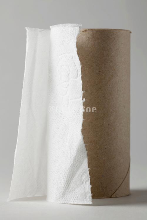 last little piece on a toilet paper roll