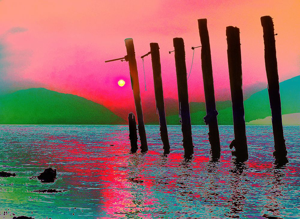 Sunset stumps