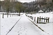 Nederland, Ubbergen, 13-1-2017De eerste sneeuw van deze winter is gevallen bij Nijmegen.Foto: Flip Franssen