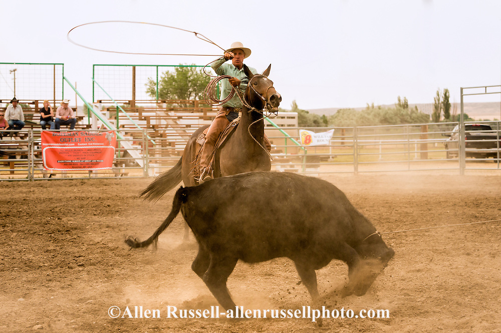 Buck Brannaman, healer, Big Loop, Will James Roundup, Ranch Rodeo, Hardin, Montana