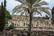 Israel, Sea of Galilee, Capernaum Ruins of the forth Century CE synagogue uncovered on site