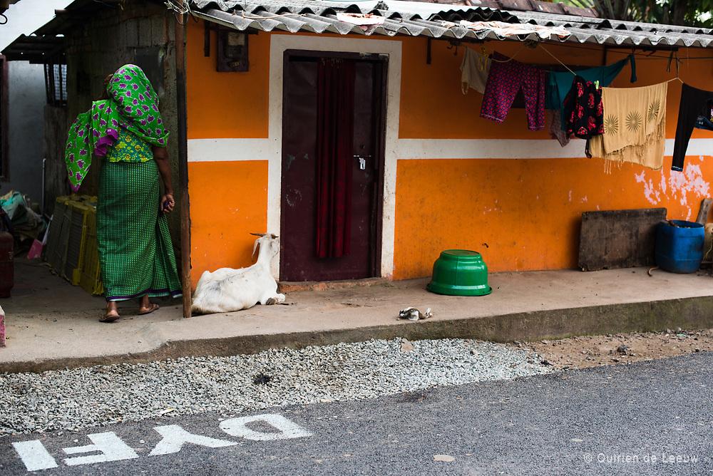 Orange little house, Allepey, India