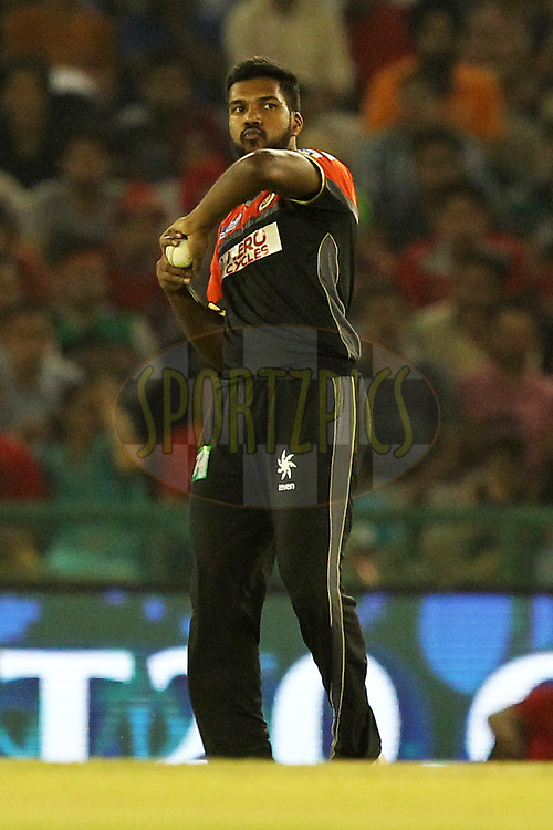 Varun Aaron of Royal Challengers Banglore during match 39 of the Vivo Indian Premier League ( IPL ) 2016 between the Kings XI Punjab and the Royal Challengers Bangalore held at the IS Bindra Stadium, Mohali, India on the 9th May 2016Photo by Prashant Bhoot / IPL/ SPORTZPICS