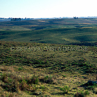 Vista do pampa, Bage, Rio Grande do Sul, Brasil, 10/07/2002 foto de Ze Paiva/Vista Imagens