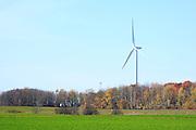 Wind Turbines at Shirley