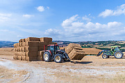 Farmer collects bales of straw into a pile for easy transport. Photographed in Tuscany, Italy in Augusat