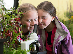 Repro Free: 29/05/2014 Geneive Hughes (10) and Madeline Hughes (9) from Virginia Co Cavan are pictured at the 'The Science of Horticulture' themed ITB (Institute of Technology Blanchardstown) stand in the Floral Pavilion at Bloom in the Park. Picture Andres Poveda
