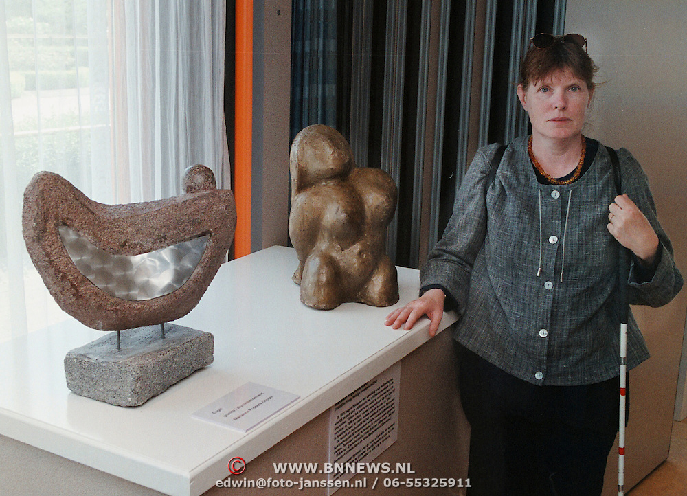 Expositie Visio Bovenweg Huizen, Marianne Poppink