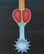 Mike Harridge. Bristol Worm Head<br /> 23.5&quot; xx 20&quot;<br /> Acrylic on Canvas.<br /> 40,000/-