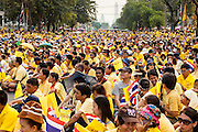 05 DECEMBER 2012 - BANGKOK, THAILAND: People gather on the Royal Plaza Wednesday to see Bhumibol Adulyadej, the King of Thailand, before his public audience at the Mukkhadej balcony of the Ananta Samakhom Throne Hall. December 5 is a national holiday. It's also celebrated as Father's Day. Celebrations are being held across the country to mark the birthday of Bhumibol Adulyadej, the King of Thailand.    PHOTO BY JACK KURTZ