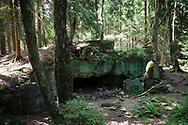 blasted bunker 107 of the Sigfried line in the Huertgen Forest near Raffelsbrand, North Rhine-Westphalia, Germany.<br /> <br /> gesprengter Bunker 107 des Westwall im Huertgenwald bei Raffelsbrand, Nordrhein-Westfalen, Deutschland.