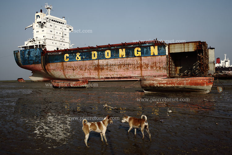 In order to dismantle the ships more easily, they have to be as close as possible to the beach. When they arrive to die in the bay of Bengal, the captain is running the boat into the beach at full speed during high tide. Then the dismantling process can start.