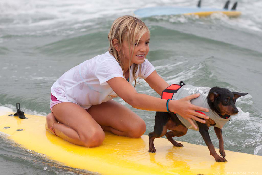 Surf Dog Surf-a-thon in Del Mar's Dog Beach.