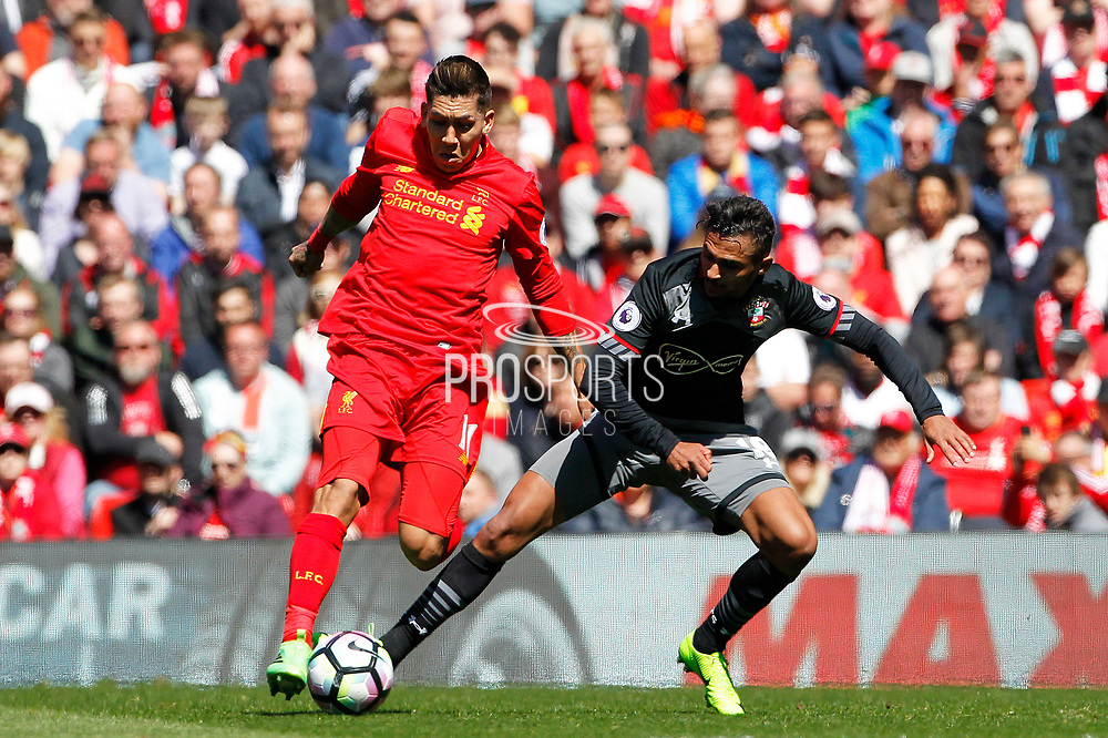 Roberto Firmino (11) of Liverpool and Sofiane Boufal (19) of Southampton during the Premier League match between Liverpool and Southampton at Anfield, Liverpool, England on 7 May 2017. Photo by Craig Galloway.
