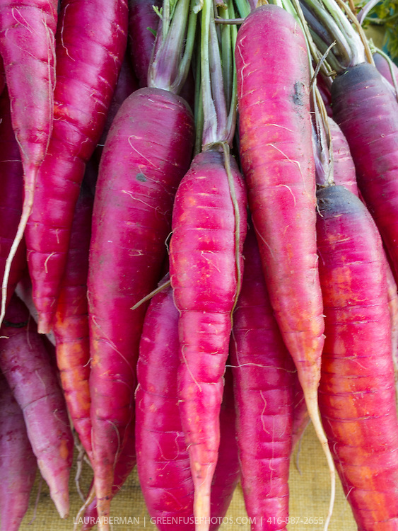 Purple carrots at a farmers market