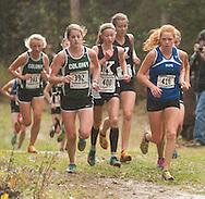 Palmer cross country at the Region III meet on September 24, 2016.