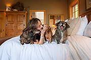 Dog portrait session with Malinda Grommet, Maxie, Brownie & Wilson