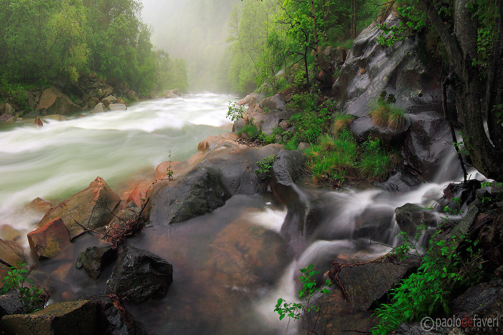 Another view of the roaring power of the Chiusella river after a long period of pouring rain, and with the addition of snow meltdown from higher altitudes. Taken at the end of May in Valchiusella, Piedmont, Italy, this is a stitch of 4 vertical takes.