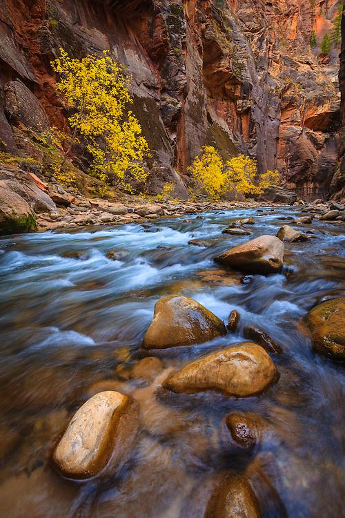 Virgin River Narrows, Zion National Park in Utah.