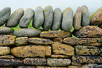 Detail of stone wall on Mainland Orkney Islands Scotland