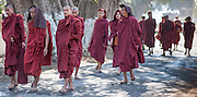 Buddhist monks strolling wrapped in their maroon robes (Myanmar)